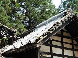 芦田町神明宮 (4)