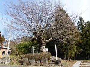 横堀宿の一里塚 (1)