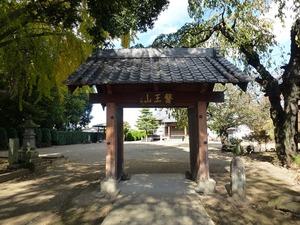 高徳寺 (2)