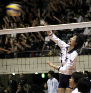 g-volley-77216
