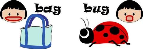 bag2bug
