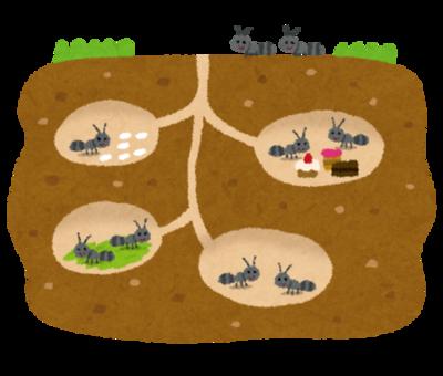 猛毒蟻ヒアリ、どんどん見つかる!日本本土は既に手遅れかwwwwwww