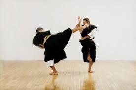 極真空手と少林寺拳法ってどっちが強いの?