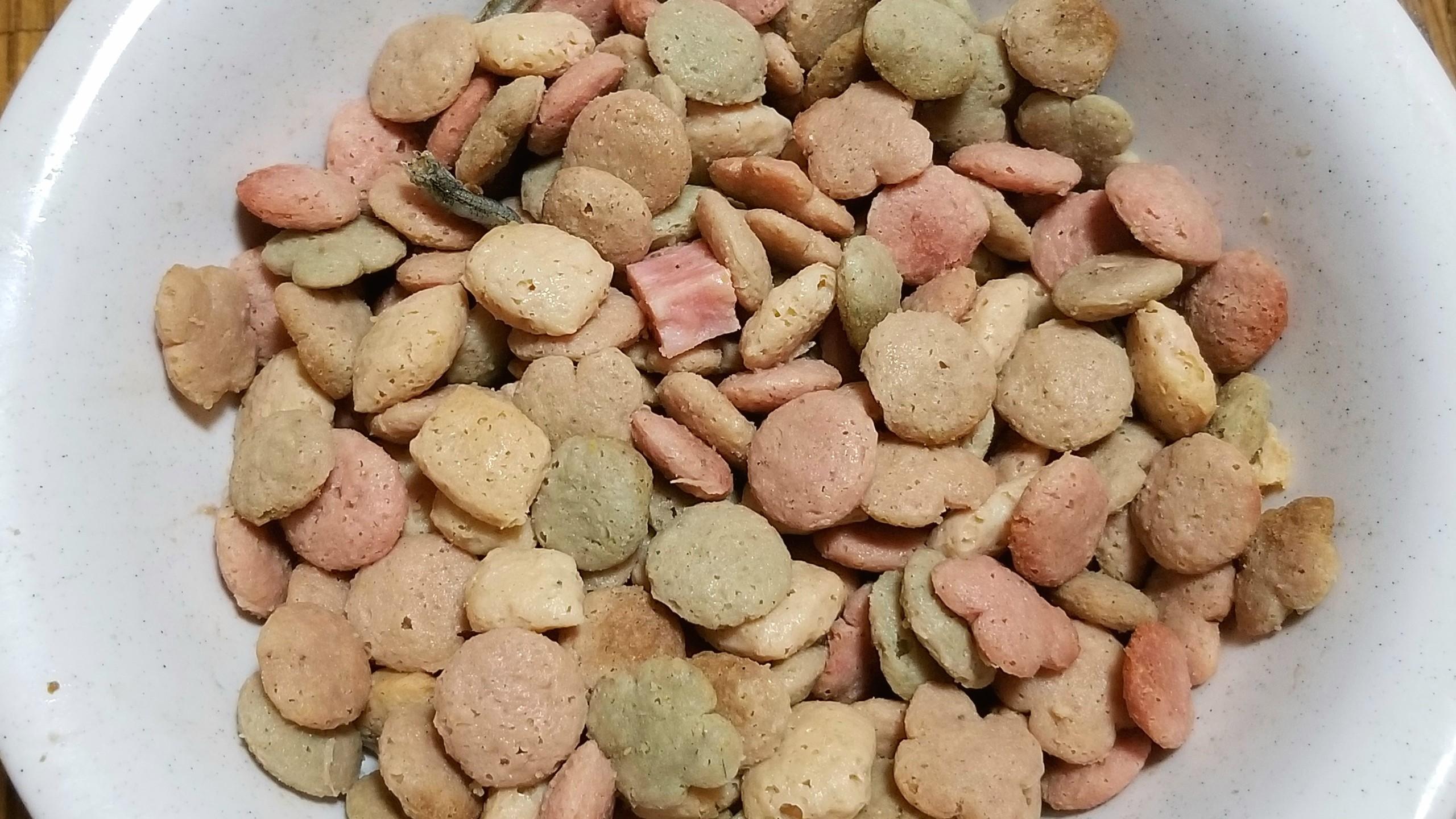 食欲減退,老犬の病気,アレルギー,食事,ドッグフード,食べない,対処