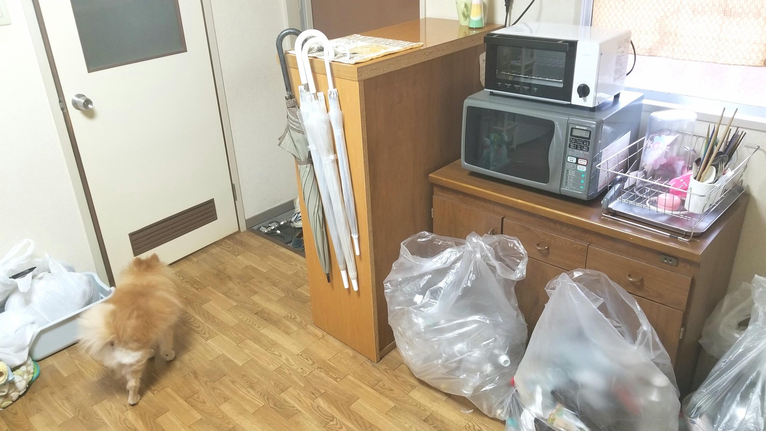 キッチン,部屋掃除,綺麗になる,ゴミ箱分別,賃貸,レンジ台,7畳,床