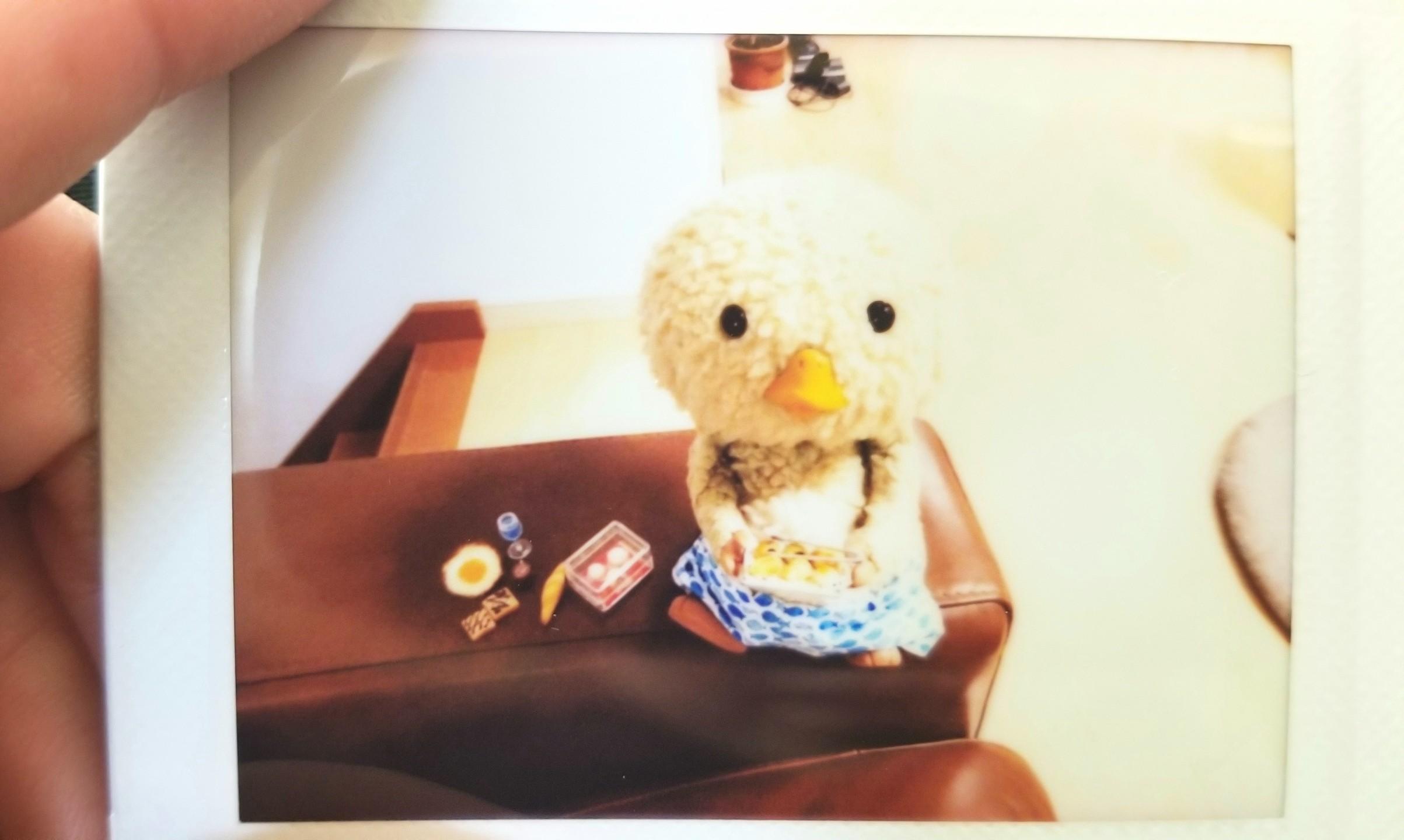 東京トガリくんからプレゼント,チェキ,ミニチュアフード,記念,宝物