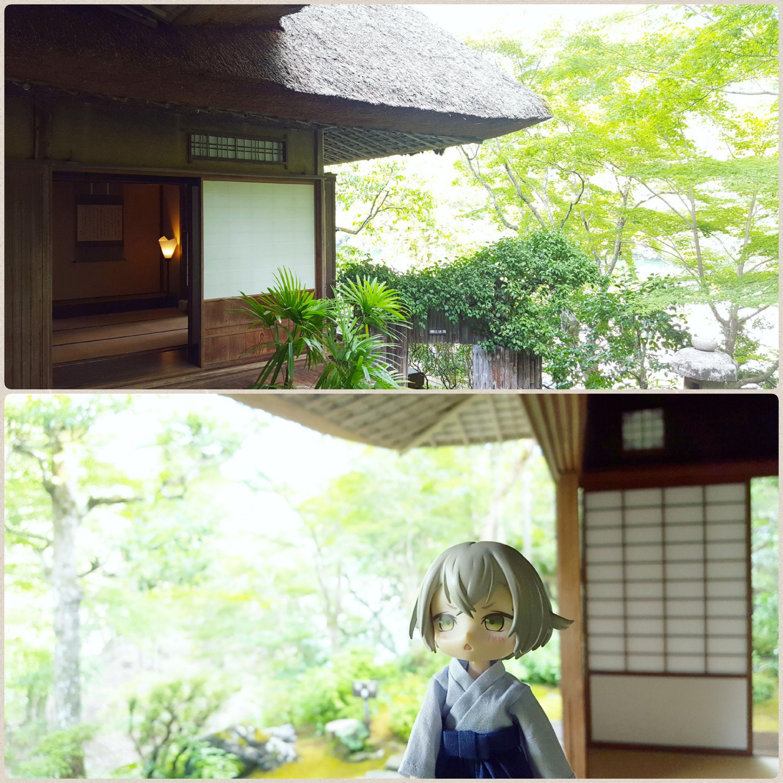 ドールとオーナー,日本旅行,愛媛県内子町,赴きのある日本家屋,楽しい