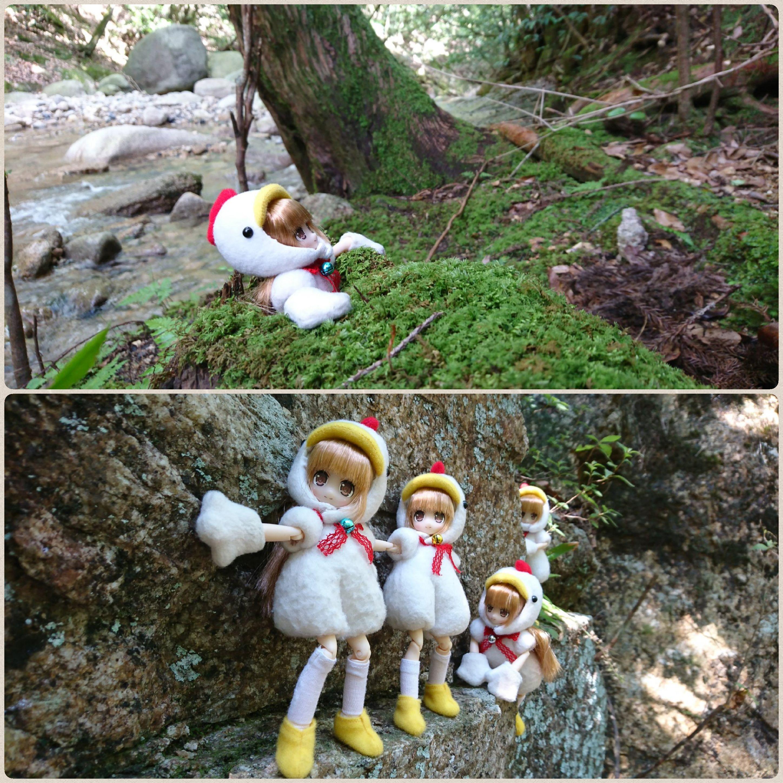 大自然を満喫,崖を越える,山を登る,ズッコケる,愉快な仲間たち,楽し