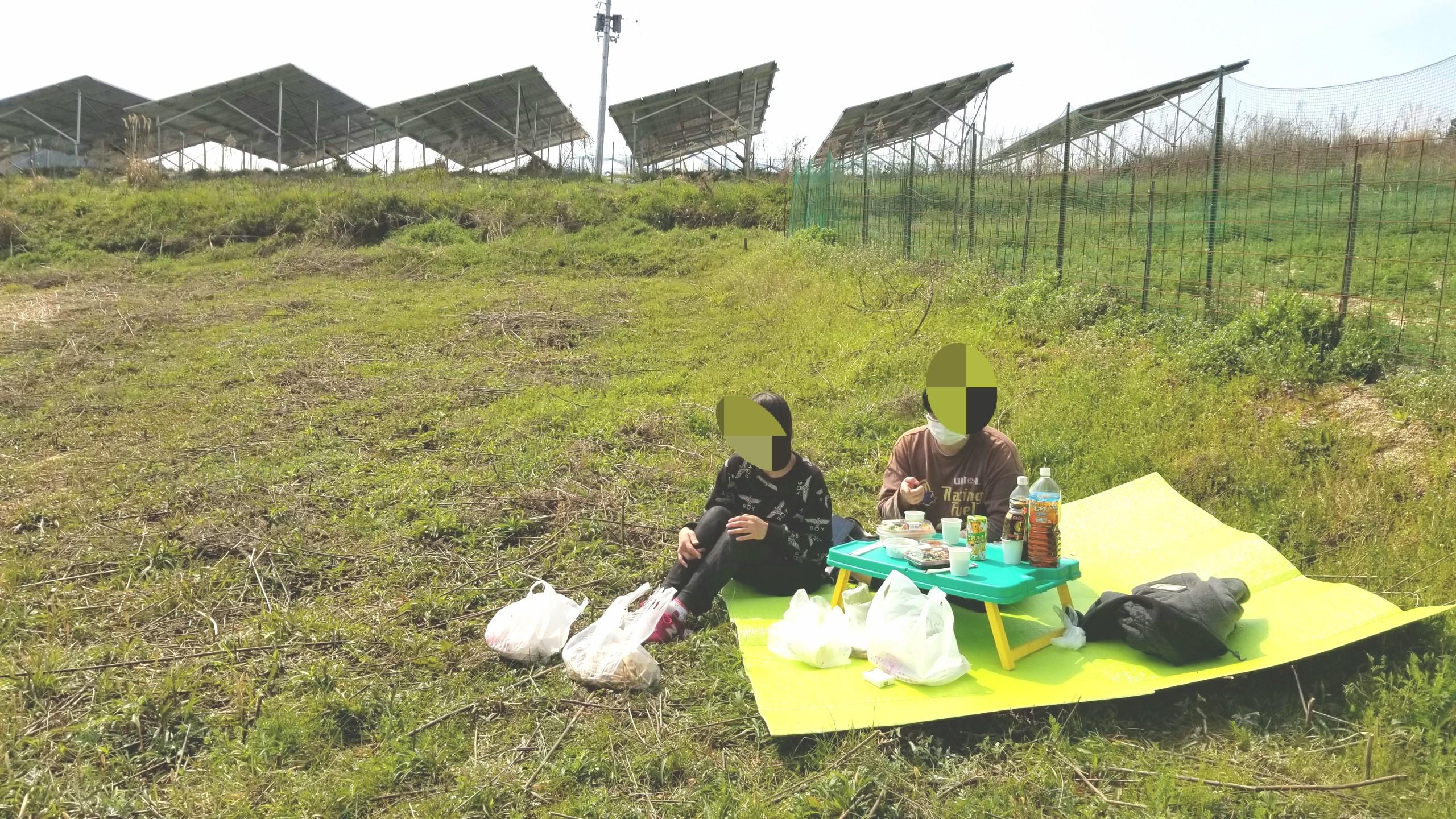 山でピクニック,楽しい大好き,自然の空気,お弁当おいしい,つくし採り