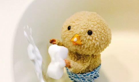 東京トガリ,お風呂掃除,お手伝い,賢い,超絶可愛い,癒される