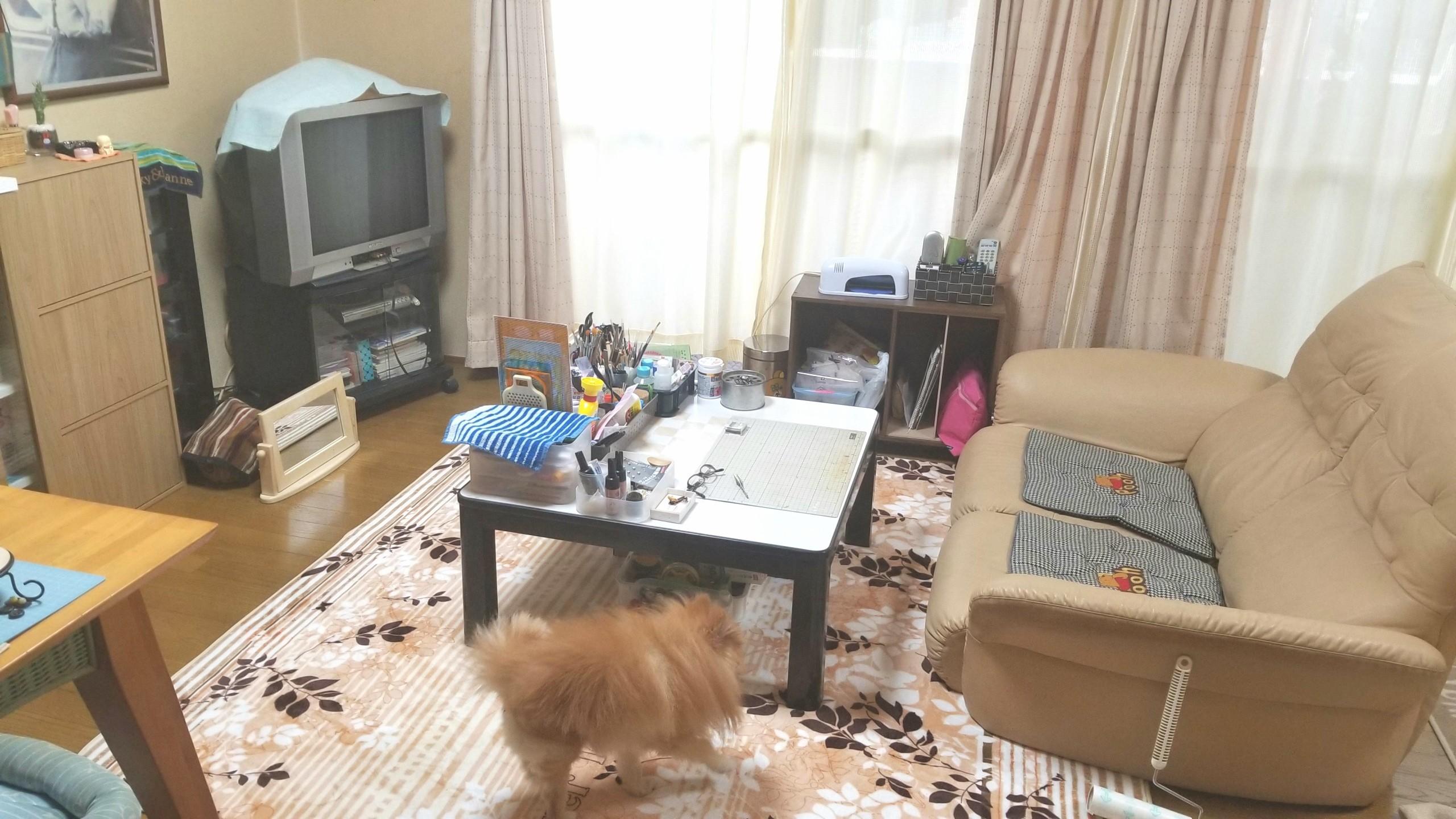 部屋,間取り,女子,片付け,リラックス,模様替え,テレビ,生活感,家具