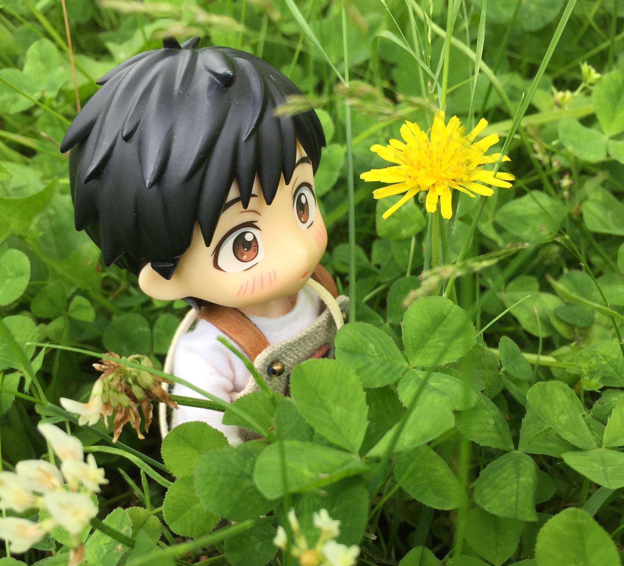 オビツろいど勇利,ユーリonアイス,クローバーの花畑でたんぽぽ見た