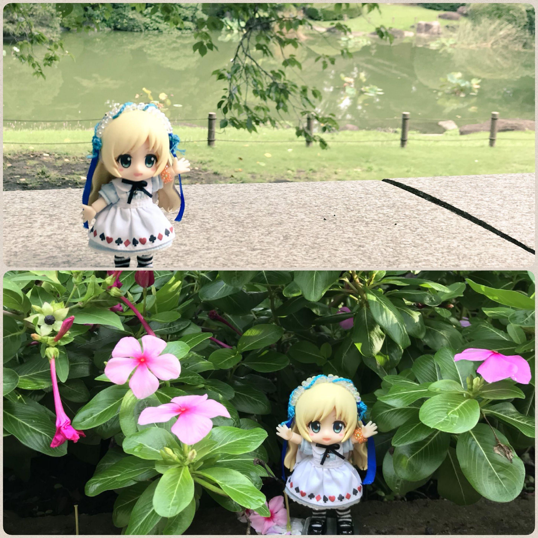 キューポッシュアリス,お外でドール撮影,綺麗なお花,広い公園