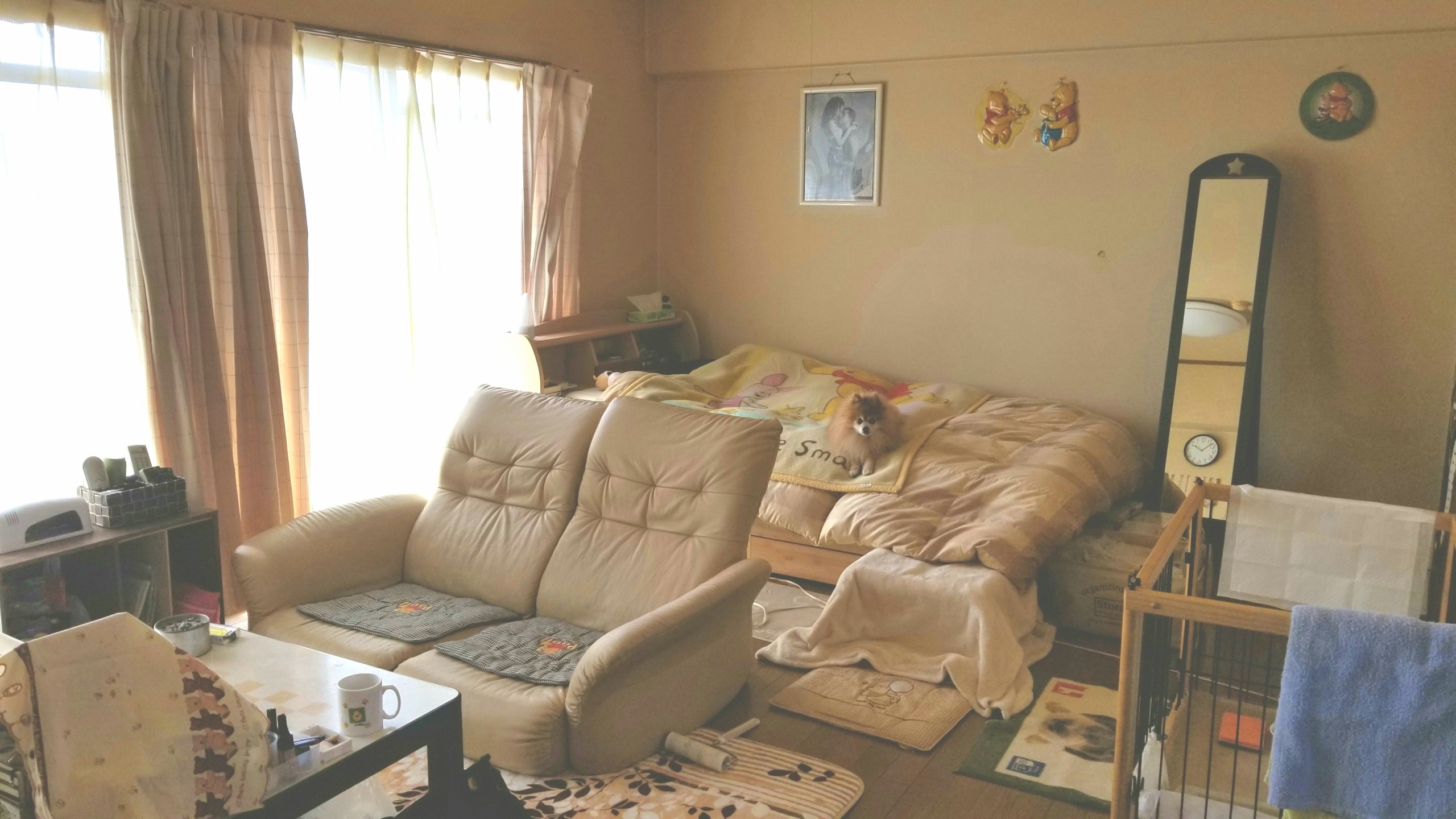 お部屋の大掃除,フローリングワンルーム,線維筋痛症の日常,家事不便