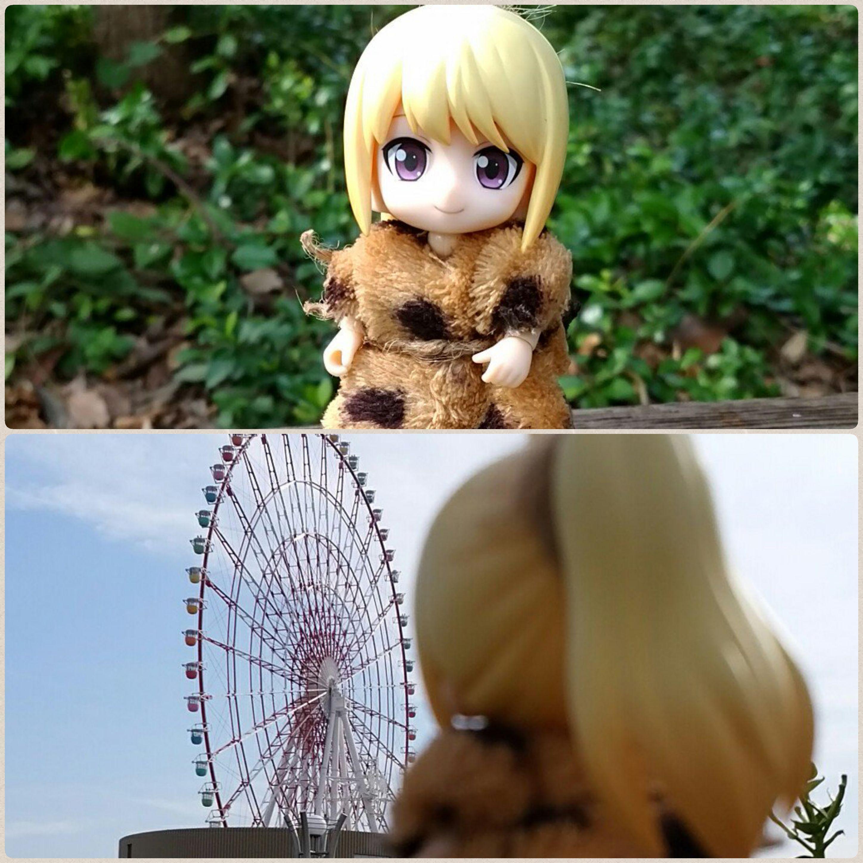 観察日記ブログ,初めて東京へ行くキューポッシュ,愛友情感動の物語