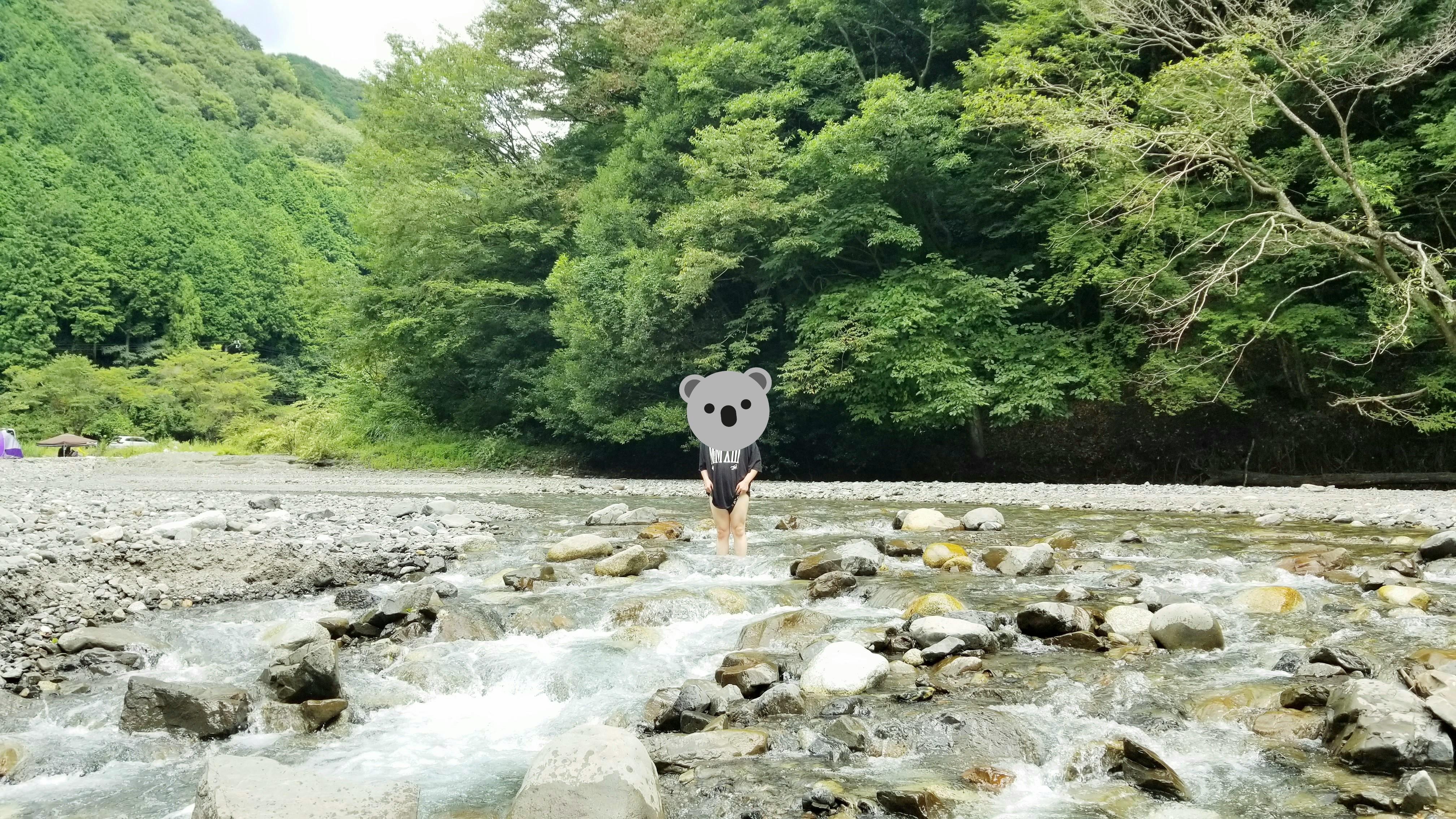 愛媛県松山市ふるさと村川遊び河夏に楽しい穴場スポット人気自然森