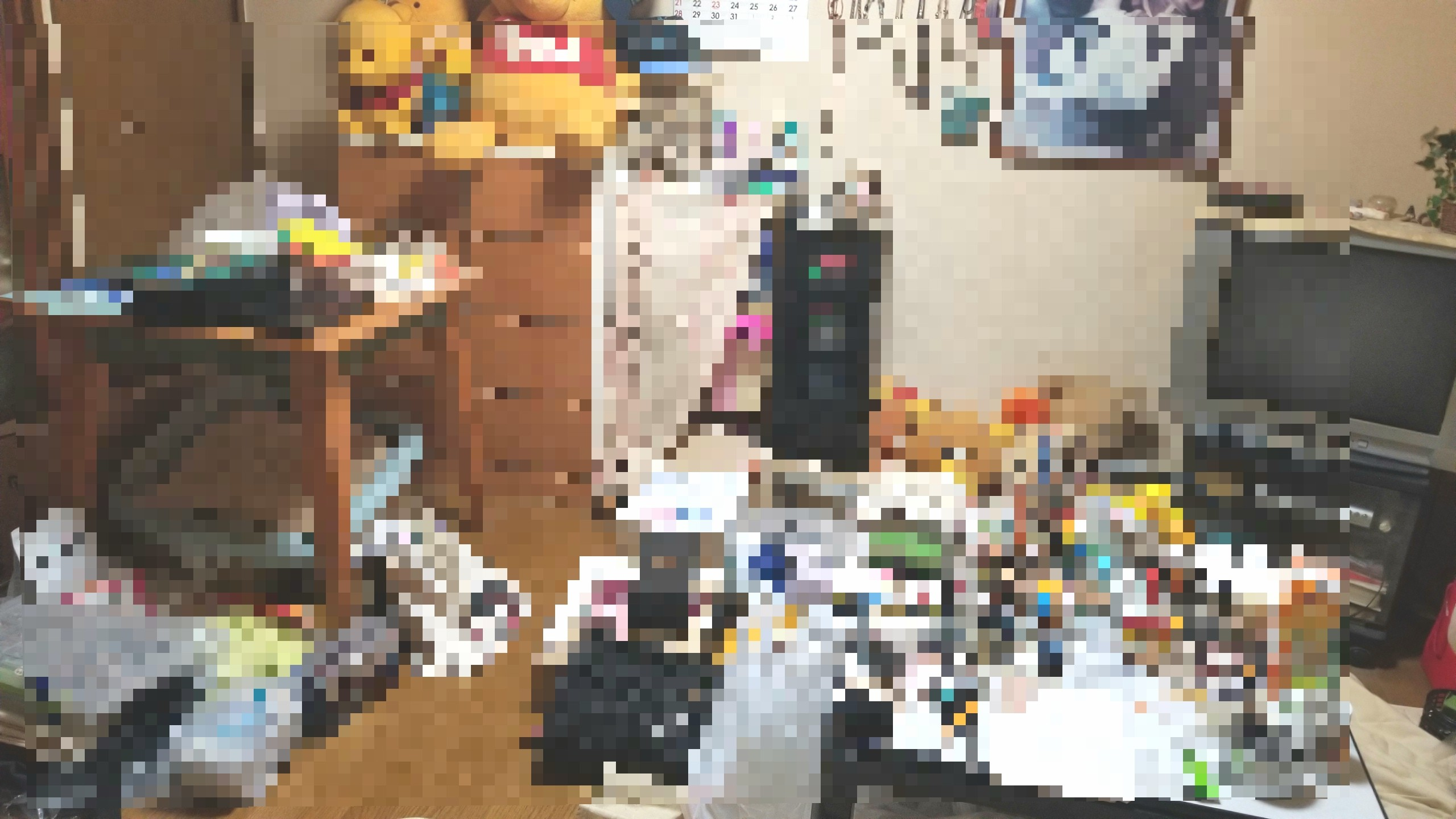 汚れたぐちゃぐちゃな部屋の大掃除,一人暮らし,手伝い,叔母