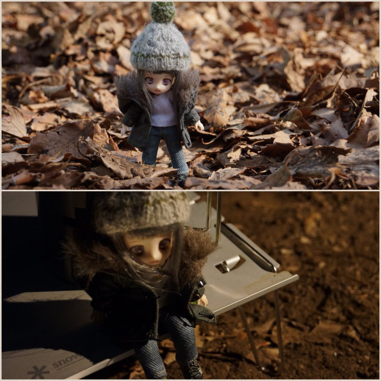 あまむすローリエ,よその子うちの子かわいい,秋の紅葉,枯れ葉,朝散歩