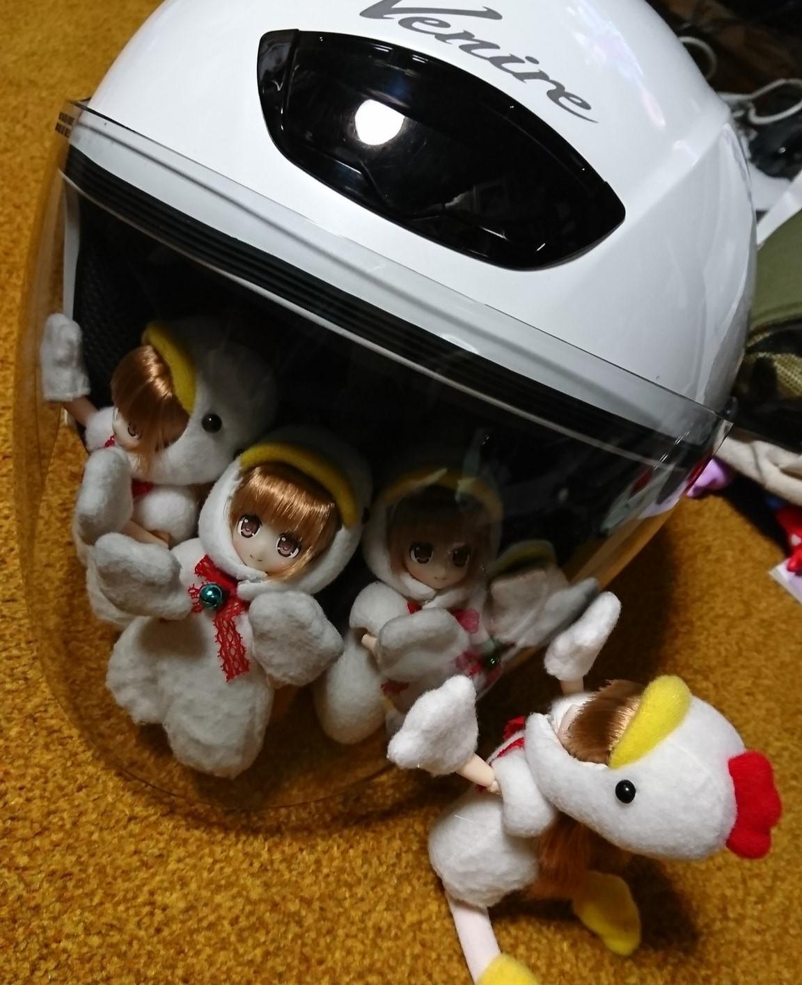 ドールオーナーと休日を楽しく過ごすトリたち,ツーリング,ヘルメット
