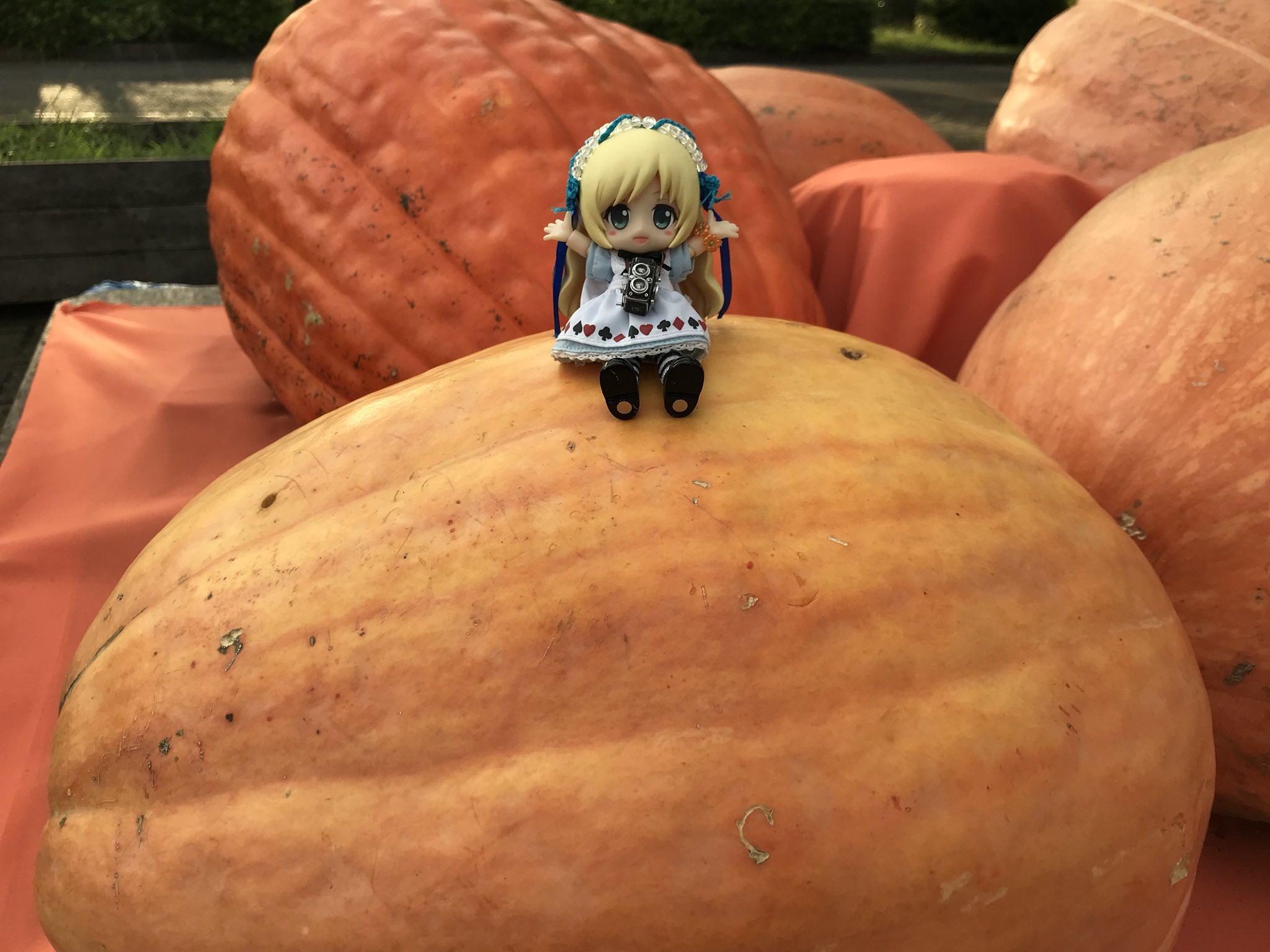 ドール,大きいかぼちゃ祭り,ハロウィン,ビッグサイズ,でかい