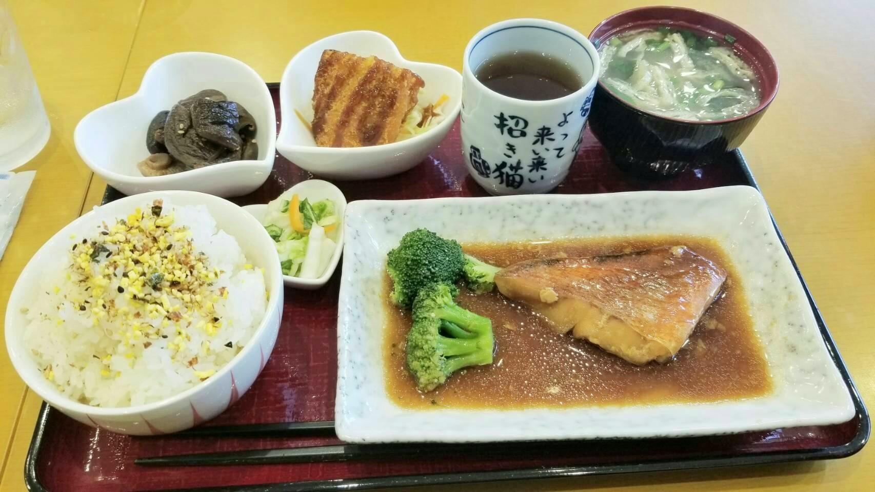 愛媛県松山市グルメ巡りランチパスポートおいしい安い低コスト