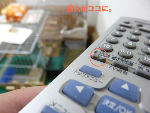 P1060028のコピー
