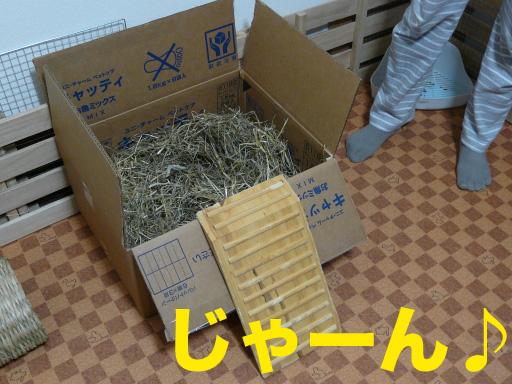 P1080459のコピー