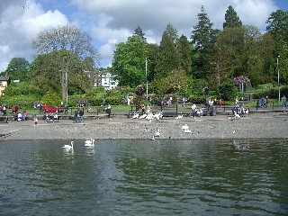 BOWNESS01