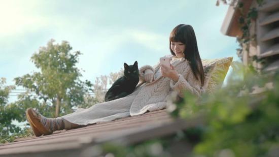 【ウィズ】もうテレビで黒猫のCMをやる気はないんだろうか…?