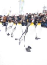 ペンギンくんの行進の2