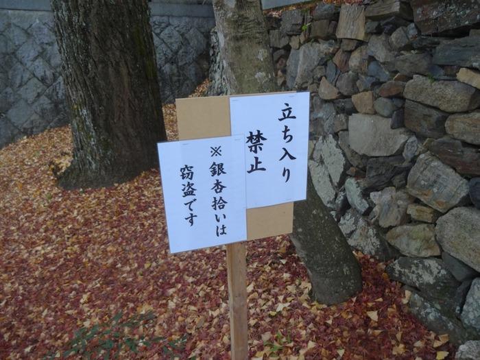 Shouhouji (6)