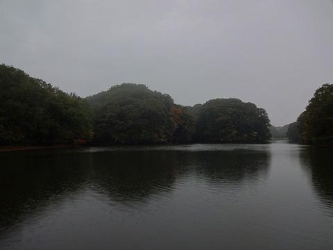 大阪府民の森みぃつけた! ~むろいけ園地 編~ (1/2話)