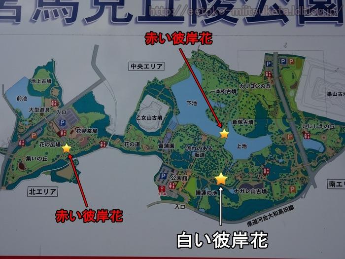 UmamiKyuuryou Park (32)