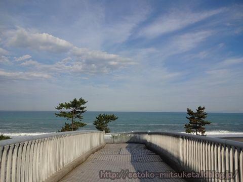 美しい砂浜!七里御浜みぃつけた!
