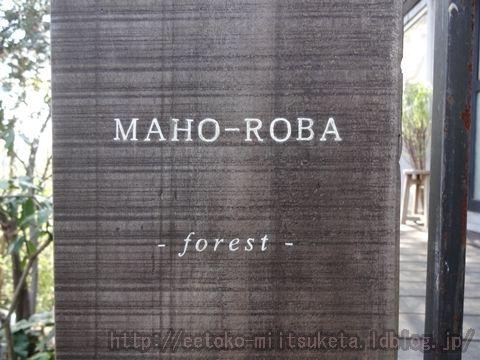 森の中にひっそり佇むカフェ!MAHO-ROBA forestみぃつけた!