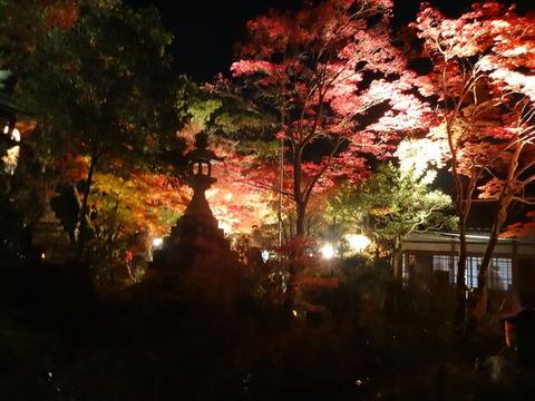 水鏡の世界!奈良の紅葉みぃつけた! ~等彌神社 編~ (3/3話)