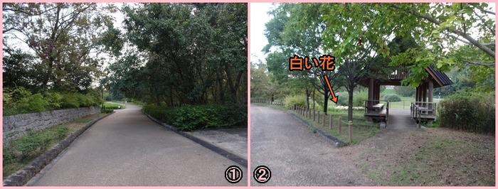 UmamiKyuuryou Park (23)