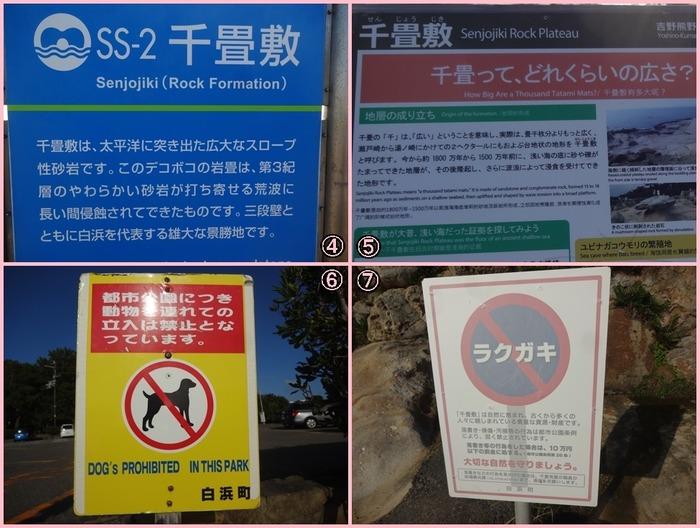Senjyoujiki (6)
