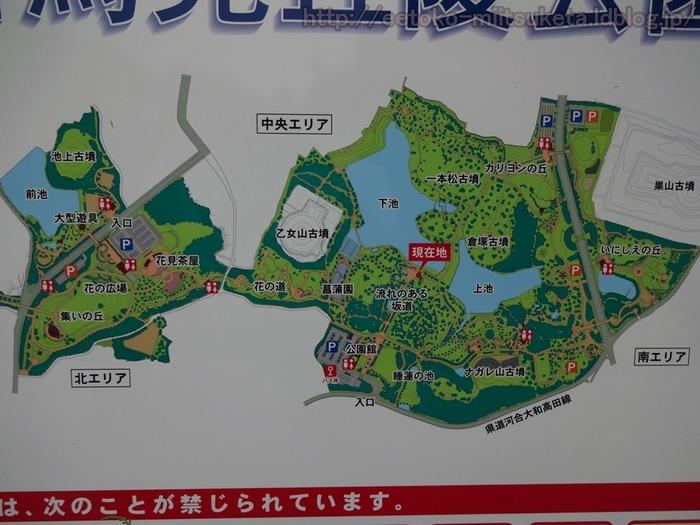 UmamiKyuuryou Park (15)