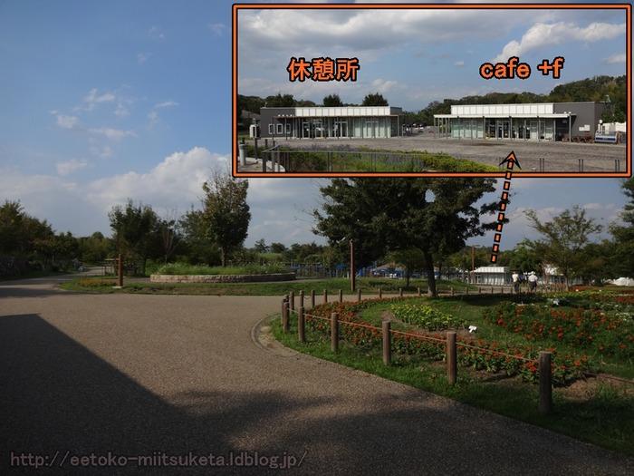 UmamiKyuuryou Park (8)
