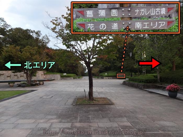 UmamiKyuuryou Park (22)