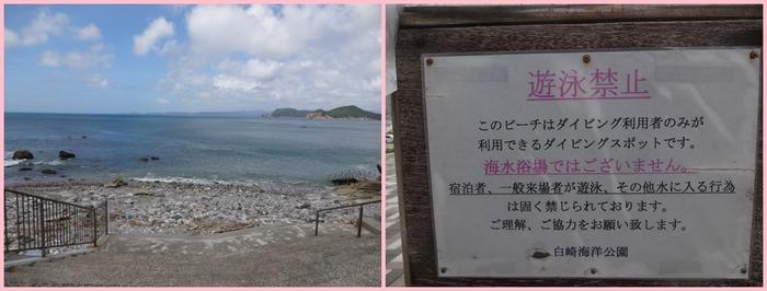 Shirosaki (19)