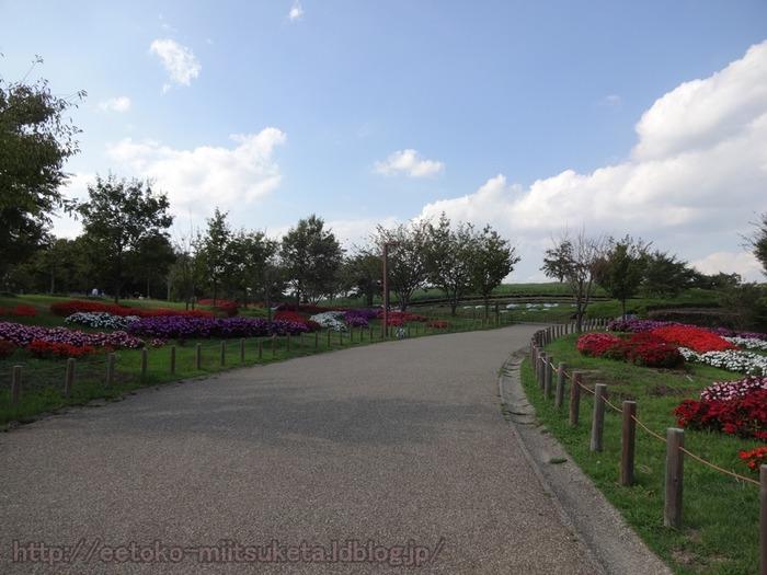 UmamiKyuuryou Park (9)