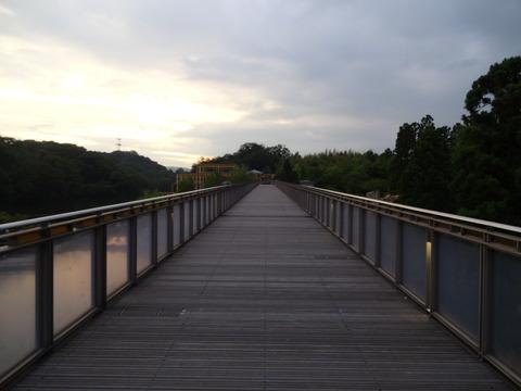 京都のホタルスポット!水景園みぃつけた!