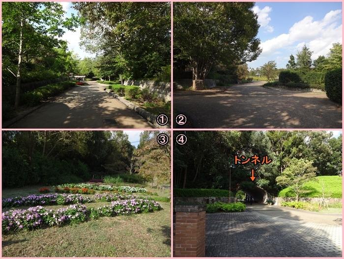 UmamiKyuuryou Park (7)