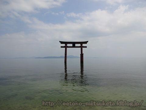 琵琶湖に建つ神秘的な鳥居!白鬚神社みぃつけた!