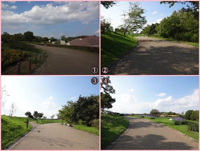 UmamiKyuuryou Park (13)