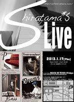 201301_flyer