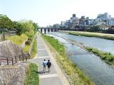 三条河原町あたりの橋を渡る
