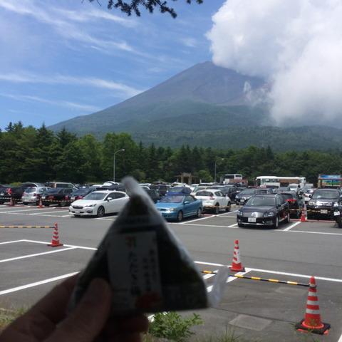 20180716 05水ヶ塚駐車場 たたき梅